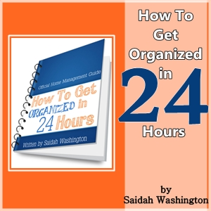 How to Get Organized in 24 hrs - Ebook Review