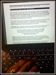 ipad view - How to organize in 24 hrs.