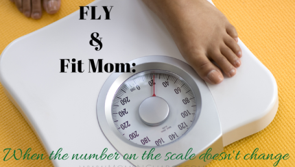 fly & fit mom weight scale