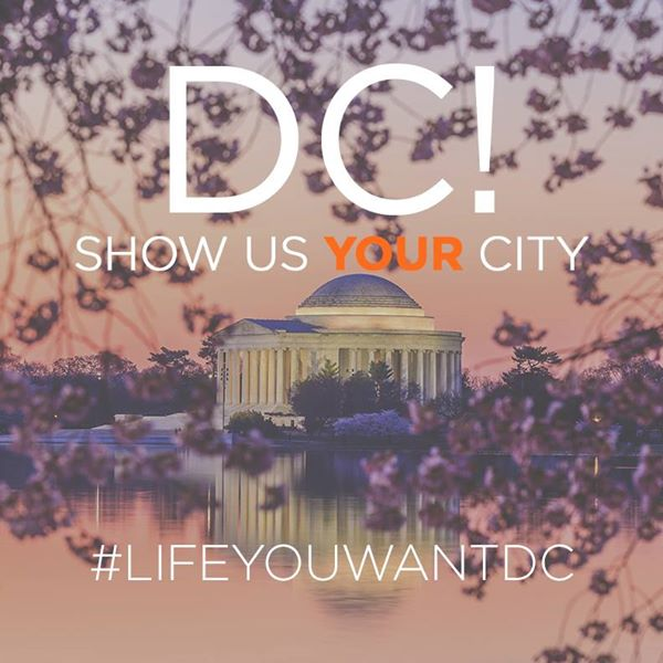 life you want DC