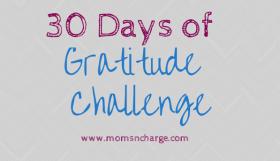 30 days of Gratifude Challenge
