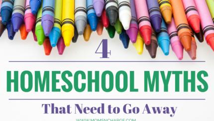 4 Homeschool myths feature