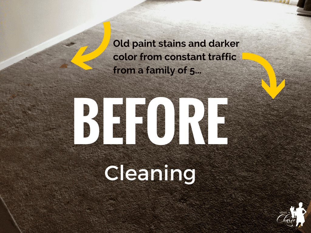 Home Advisor - BEFORE carpet clean - momsncharge