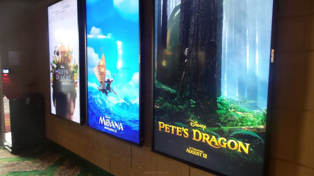 Pete's Dragon Event - Red Carpet_19