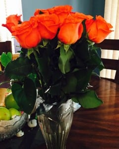 orange-roses love pays dividends