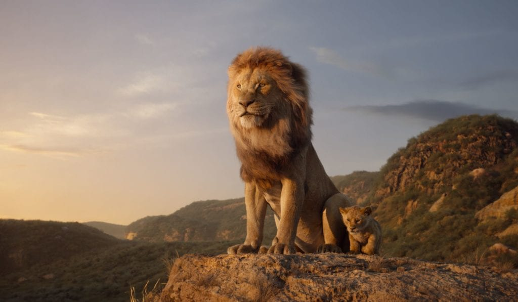 Lion king - Mustafa overlooking the mountains